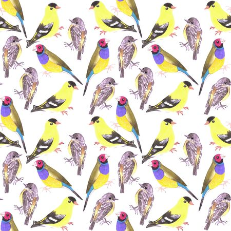 Birds in tints and shades of yellow seamless watercolor bird painting background
