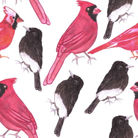 Cardinals and black phoebe seamless watercolor repeat background