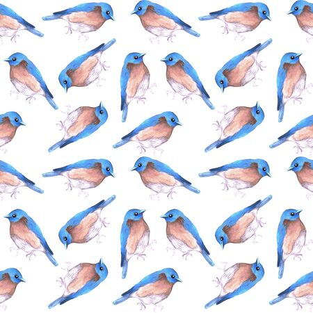 Eastern bluebird or Sialia sialis bird seamless watercolor birds painting background