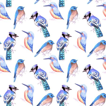 Birds kingfisher, bluejay, bluebird in tints and shades of blue seamless watercolor background