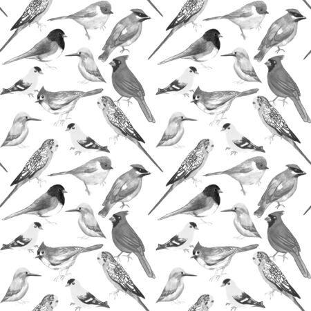 Black and white birds against white background seamless artwork Stockfoto