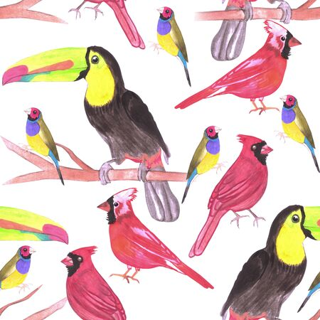 watercolor birds in tetrad color scheme seamless watercolor background-green, yellow, red, blue