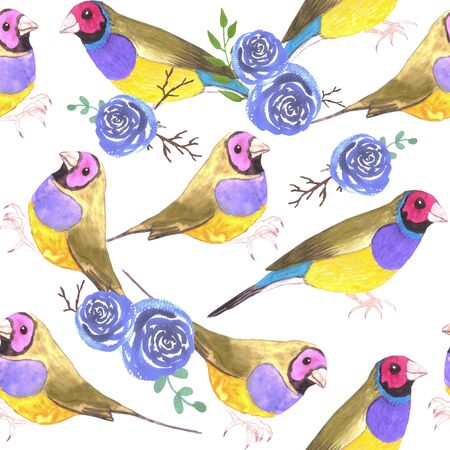 Red headed male Gouldian finches and roses or Erythrura gouldiae bird seamless watercolor birds painting Illustration