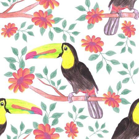 Keel billed Toucan bird or Ramphastidae sulfuratus bird seamless watercolor birds and flowers background Illustration