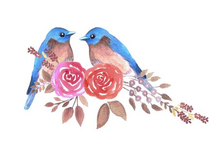Eastern bluebird or Sialia sialis couple on red roses watercolor artwork