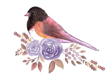 Dark eyed Junco and perennial flowering plant watercolor painting
