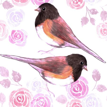 Dark eyed Juncos and pink roses bird seamless watercolor birds painting background