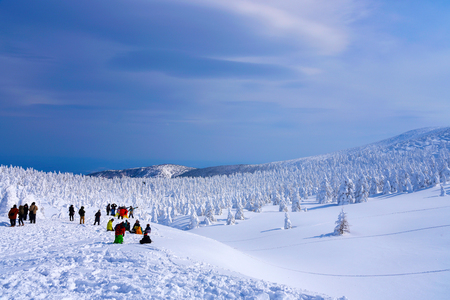 Snow Monsters of Mt.Zao in Yamagata , Japan