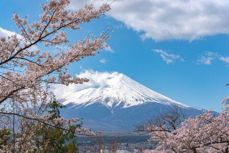 Zbliżenie pokryte śniegiem Mount Fuji (Mt. Fuji) z jasnym ciemnym niebieskim tle nieba w wiosenne kwiaty wiśni. Zdjęcie Seryjne