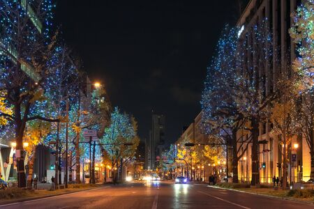 Festival of the Lights in Osaka. The winter illumination events, Midosuji Illumination and Hikari Renaissance.