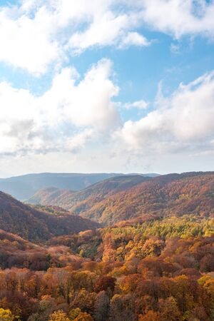 Aerial view of valley and stream in fall season. Colorful forest trees background in red, orange, and golden colors 写真素材
