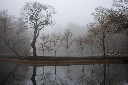 Kumobaike Pond winter scenery view, withered tree reflecting on surface in foggy day in Karuizawa, Nagano Prefecture, Japan Banco de Imagens