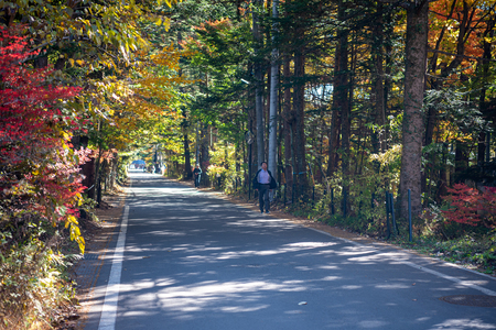 Karuizawa scenery scenery, colorful tree with red, orange, yellow, golden colors around the town in sunny day. Famous tourist attractions. Karuizawa, Nagano Prefecture, Japan - Oct 31, 2018