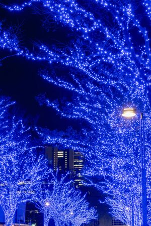 Shibuya Blue Cave winter illumination festival, beautiful view, popular tourist attractions, travel destinations for holid ay, famous romantic light up events in Tokyo city, Japan