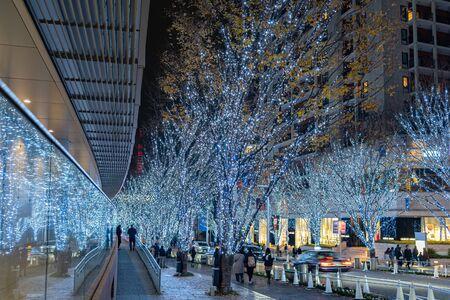 Festiwal zimowego oświetlenia Roppongi Hills, nocny widok w Mori Garden Park, piękny widok, popularne atrakcje turystyczne, cele podróży na wakacje, słynne wydarzenia w mieście Tokio, Japonia