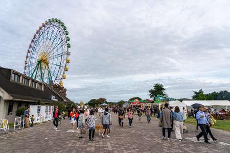 Inside the Hitachi Seaside Park. Ibaraki Prefecture, Japan.