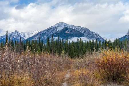Snow capped Mount Lady MacDonald mountain in autumn. Beautiful natural scenery landscape at Canmore, Canadian Rockies, Alberta, Canada.