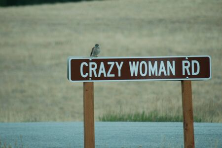 rd: crazy woman rd