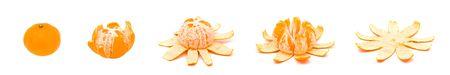 Sequence of single orange unfolding over white background Stock Photo - 6805436