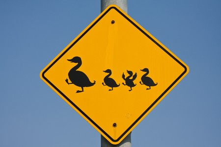 Traffic sign to be cautious because of crossing ducks photo