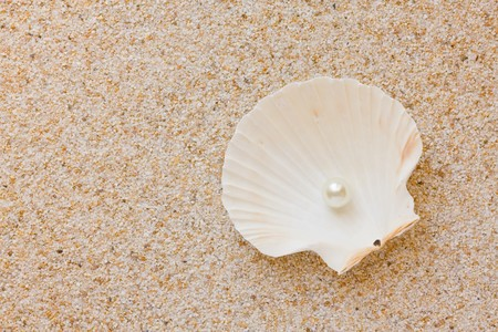 scallop shell: Sea shell with great white pearl on sand background Stock Photo