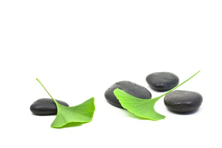 ginkgo leaf: Ginkgo leaves on black pebbles over white background Stock Photo
