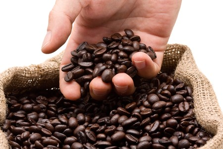 Hand reaching into roasted coffee beans in burlap bag Stock Photo