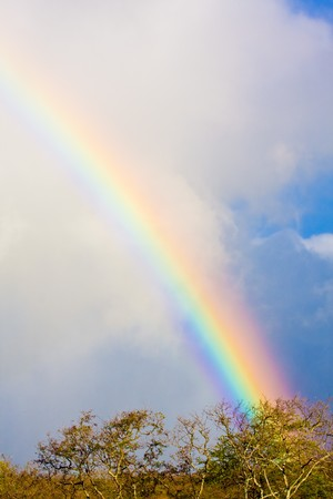 Beautiful bright rainbow in blue sky with clouds photo