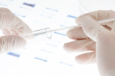 dna test: Researcher putting sample of DNA test into a test tube