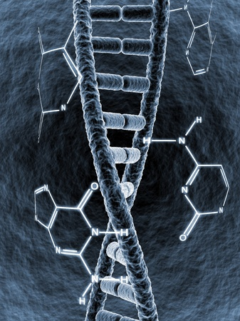adenine: DNA strand surrounded by chemical formula of its bases Stock Photo