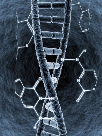 genetica: Filamento di DNA circondato da formula chimica relative basi Archivio Fotografico
