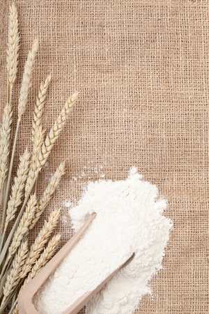 Wheat ears and flour in wooden scoop on burlap background with copy space