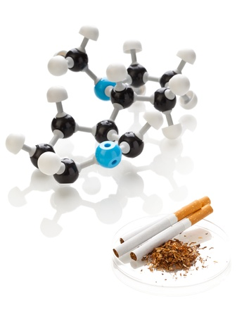 nicotine: Model of a nicotine molecule with tobacco and cigarettes over white background
