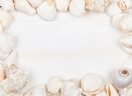 Seashell frame on white wooden planks with copy space photo