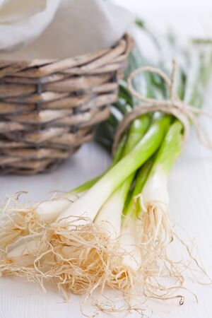 green onions: Spring onions  green onions  on wooden table Stock Photo