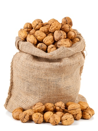Organic fresh harvested walnuts in burlap sack on white background photo