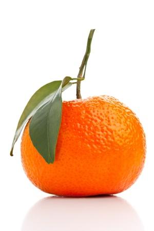Single whole organic tangerine on white background Stock Photo - 17625225