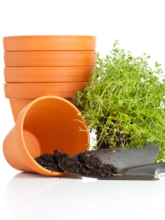 Stacked empty plant pots with shovel and herbs on white background photo