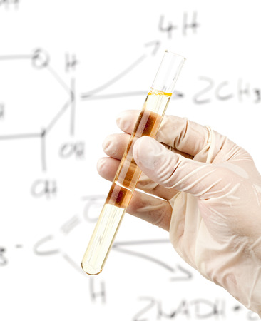 Researcher holding test tube with biofuel from corn kernels in front of whiteboard with glucose to ethanol process photo