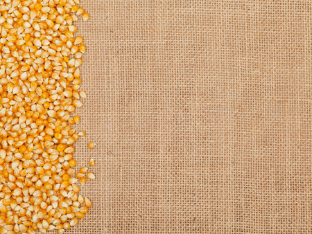 Dried raw corn kernels border on burlap background photo