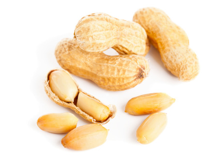 ground nuts: Roasted peanuts whole and opened on white background