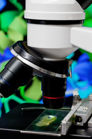 haemoglobin: Microscope in front of rotating hemoglobin molecule on computer screen Stock Photo