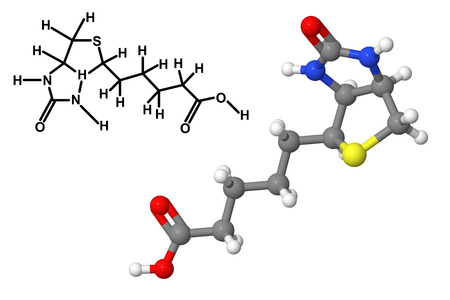 biotin: Vitamin B7 (Biotin, vitamin H, coenzyme R) molecule with chemical formula isolated on white background