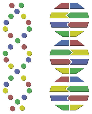 genom: Abstract DNA molecule illustration isolated on white background
