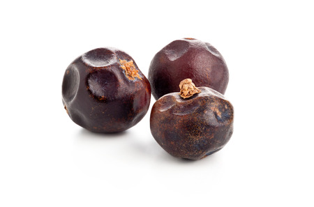 juniper: Three dried juniper berries on white background macro shot