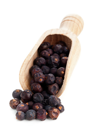 black berry: Dried juniper berries in wooden scoop on white background Stock Photo
