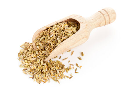 fennel seeds: Dried organic fennel seeds on wooden scoop over white background