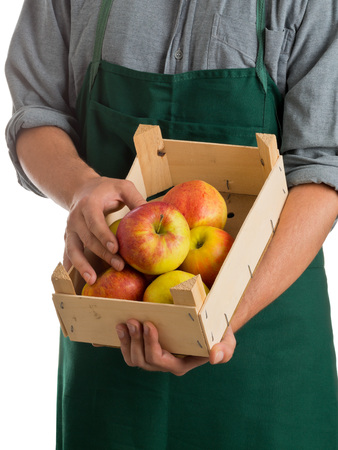 Farmer with green apron and grey shirt holding crate with fresh harvested apples isolated on white background photo