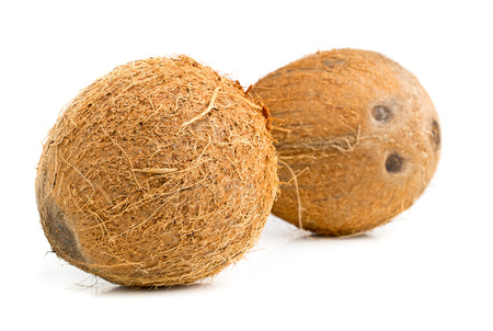 uncut: Two whole uncut coconuts over white background