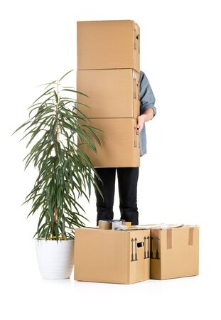 houseplant: Man lifting moving carton boxes with plant over white background Stock Photo